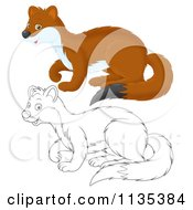 Cartoon Of A Cute Outlined And Colored Weasel Royalty Free Vector Clipart by Alex Bannykh