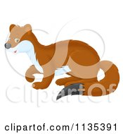 Cartoon Of A Cute Brown Weasel Royalty Free Vector Clipart by Alex Bannykh