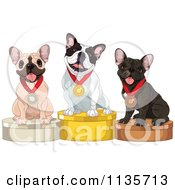 Cartoon Of Cute Show French Bulldogs On Placement Podiums Royalty Free Vector Clipart