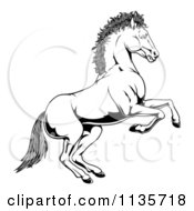 Clipart Of A Black And White Rearing Horse Royalty Free Vector Illustration