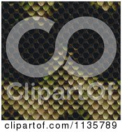 Clipart Of A Seamless Snake Skin Scales Texture Background Pattern Version 7 Royalty Free CGI Illustration