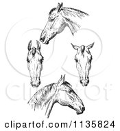 Clipart Of A Retro Vintage Engraved Horse Anatomy Of Bad Heads In Black And White Royalty Free Vector Illustration