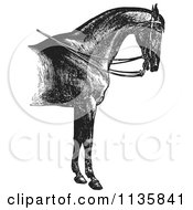 Clipart Of A Retro Vintage Engraved Horse Anatomy Of A Reined Horse With Good Shoulders In Black And White Royalty Free Vector Illustration