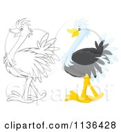 Cartoon Of A Cute Outlined And Colored Ostrich Royalty Free Vector Clipart by Alex Bannykh