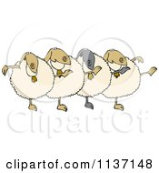 Cartoon Of A Chorus Of Sheep Dancing The Can Can Royalty Free Vector Clipart by djart