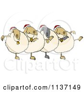 Chorus Of Christmas Sheep Dancing The Can Can