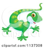 Cartoon Of A Cute Green Gecko Royalty Free Clipart by Alex Bannykh