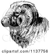 Clipart Of A Retro Vintage Black And White Ram Head Royalty Free Vector Illustration
