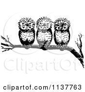 Clipart Of Retro Vintage Black And White Three Owls On A Branch Royalty Free Vector Illustration by Prawny Vintage