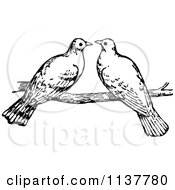 Retro Vintage Black And White Dove Pair On A Branch