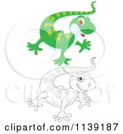 Cartoon Of A Cute Green And Black And White Baby Gecko Royalty Free Vector Clipart by Alex Bannykh