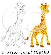 Cartoon Of A Cute Colored And Black And White Giraffe Royalty Free Vector Clipart by Alex Bannykh