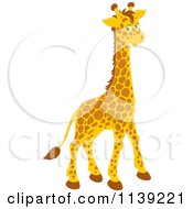 Cartoon Of A Cute Giraffe Royalty Free Vector Clipart