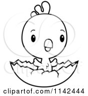 Cartoon Clipart Of A Black And White Cute Baby Rooster Chick Hatching Vector Outlined Coloring Page