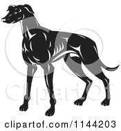 Clipart Of A Retro Black And White Greyhound Dog Royalty Free Vector Illustration by patrimonio