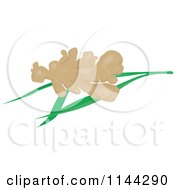 Clipart Of Ginger Root Over Leaves Royalty Free Vector Illustration by patrimonio