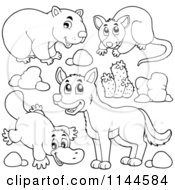 Cartoon Of A Cute Black And White Aussie Dingo Platupus Wombat And Possum With Plants And Boulders Royalty Free Vector Clipart