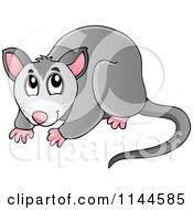 Cartoon Of A Cute Australian Possum Royalty Free Vector Clipart