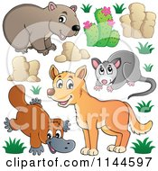 Cartoon Of A Cute Aussie Dingo Platupus Wombat And Possum With Plants And Boulders Royalty Free Vector Clipart by visekart