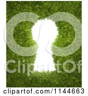 Clipart Of A 3d Keyhole Through Leaves Royalty Free CGI Illustration