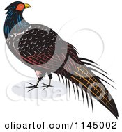 Clipart Of A Retro Pheasant Bird Royalty Free Vector Illustration