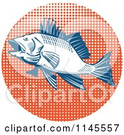 Clipart Of A Retro Sea Bass Fish Over Orange Halftone Royalty Free Vector Illustration
