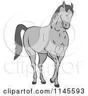 Clipart Of A Gray Horse Royalty Free Vector Illustration