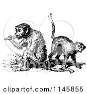 Clipart Of Retro Vintage Black And White Monkeys Royalty Free Vector Illustration