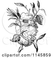 Clipart Of A Retro Vintage Black And White Capocier Bird Nest Royalty Free Vector Illustration