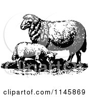 Clipart Of A Retro Vintage Black And White Lamb And Sheep Royalty Free Vector Illustration by Prawny Vintage