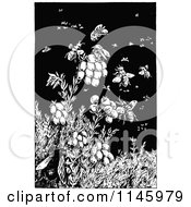 Clipart Of Retro Vintage Black And White Bees On Berries Royalty Free Vector Illustration by Prawny Vintage