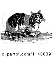 Clipart Of A Retro Vintage Black And White Tabby Cat Royalty Free Vector Illustration by Prawny Vintage
