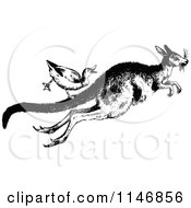 Retro Vintage Black And White Duck Riding A Kangaroo