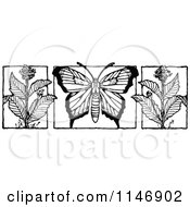 Clipart Of A Retro Vintage Black And White Butterfly And Milkweed Flowers Royalty Free Vector Illustration