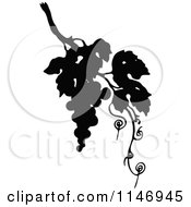 Clipart Of Retro Vintage Silhouetted Grapes And Vine Royalty Free Vector Illustration