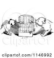 Clipart Of Retro Vintage Black And White Cats Eating Budgies From A Cage Royalty Free Vector Illustration by Prawny Vintage