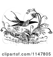Clipart Of A Retro Vintage Black And White Hummingbird And Flowers Royalty Free Vector Illustration
