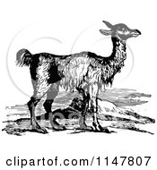 Clipart Of A Retro Vintage Black And White Llama Royalty Free Vector Illustration by Prawny Vintage