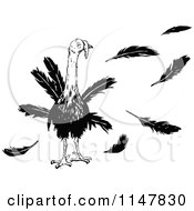 Clipart Of A Retro Vintage Black And White Turkey Bird And Feathers Royalty Free Vector Illustration