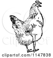 Clipart Of A Retro Vintage Black And White Chicken Royalty Free Vector Illustration by Prawny Vintage