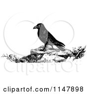 Clipart Of A Retro Vintage Black And White Raven Royalty Free Vector Illustration