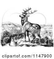 Clipart Of A Retro Vintage Black And White Stag Deer Royalty Free Vector Illustration by Prawny Vintage