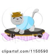 Skateboarding Cat