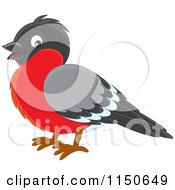 Cartoon Of A Robin Bird Royalty Free Vector Clipart