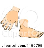 Cartoon of a Happy Foot Mascot - Royalty Free Vector ...
