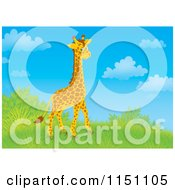 Cartoon Of A Cute Giraffe On A Grassy Hill Royalty Free Clipart by Alex Bannykh