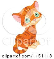 Cartoon Of A Cute Orange Tabby Kitten With Gren Eyes Looking Back Royalty Free Vector Clipart by Pushkin