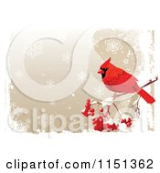 Clipart Of A Red Cardinal Bird With Berries Over A Grungy Snowflake Background Royalty Free Vector Illustration