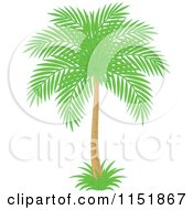 Clipart Of A Palm Tree Royalty Free Vector Illustration