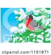 Cartoon Of A Robin On A Snow Flocked Tree Royalty Free Illustration